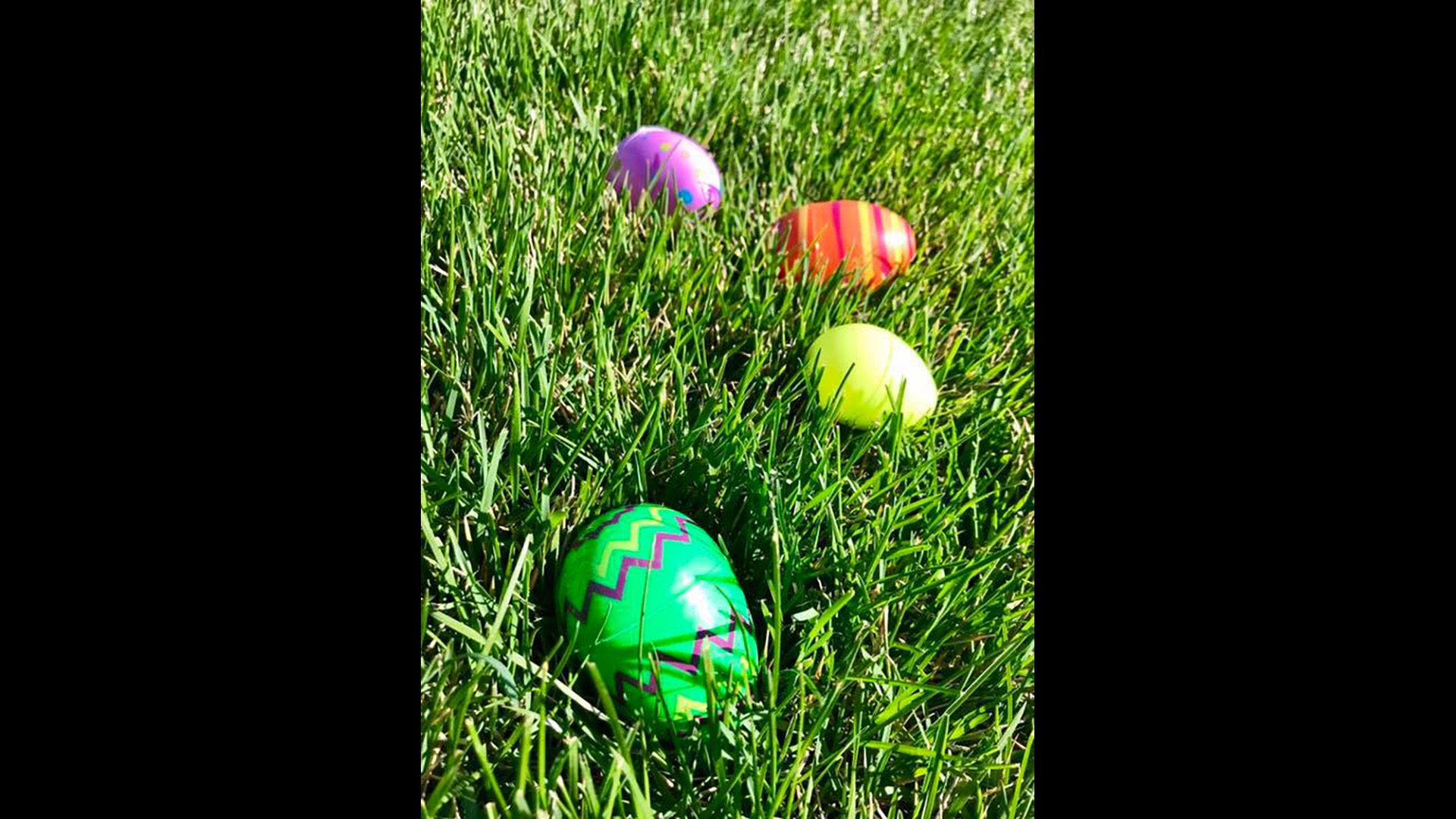 Easter Egg Hunt 2019 f