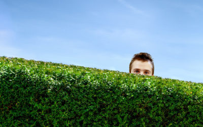 Is Your 'Hedge of Protection' Due for an Upgrade?